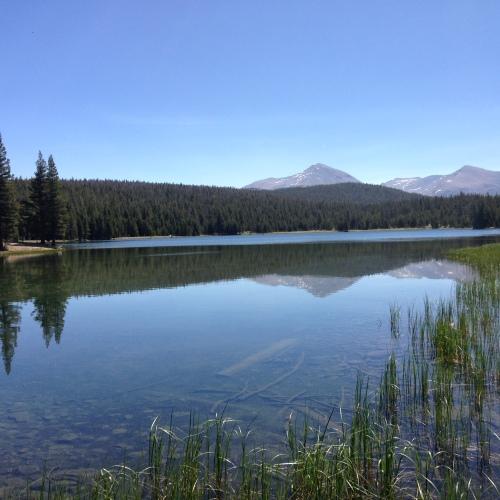 Dog Lake Vista