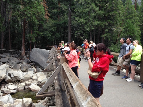 Visitors taking photos at Lower Yosemite Falls